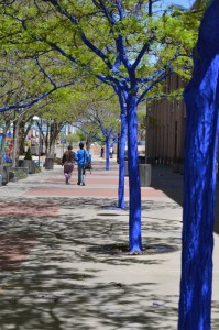 The Blue Tree Project at 4th Street Mall